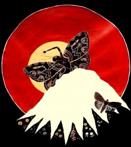 Bogon moth
